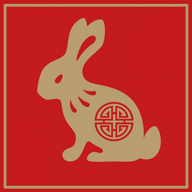 RABBIT Chinese Zodiac Signs 2021: Predictions for Love, Money & Finance and Health