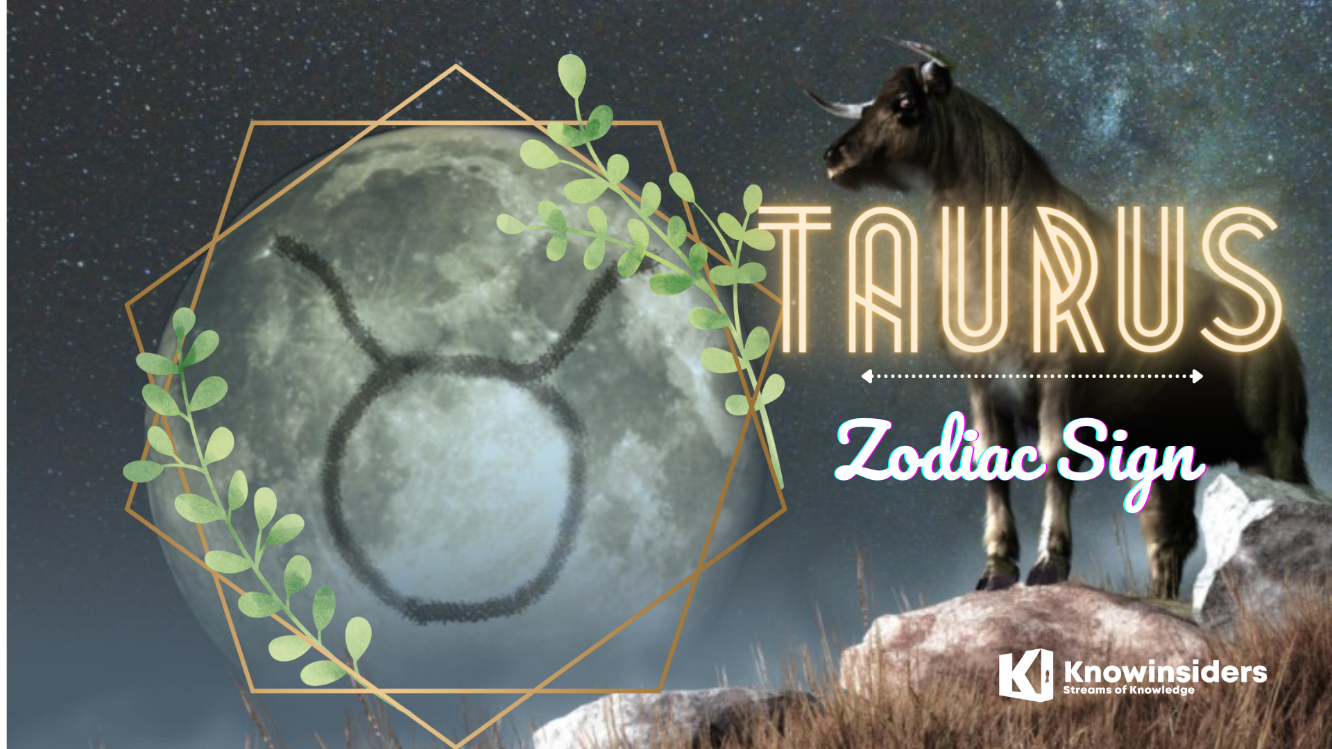 Top 5 Most Beautiful Zodiac Signs According To Astrology