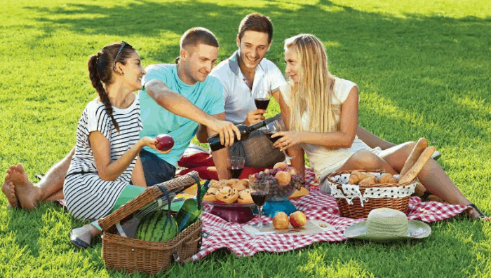 Picnic Day (June 18): History, Significances, Theme and Celebrations