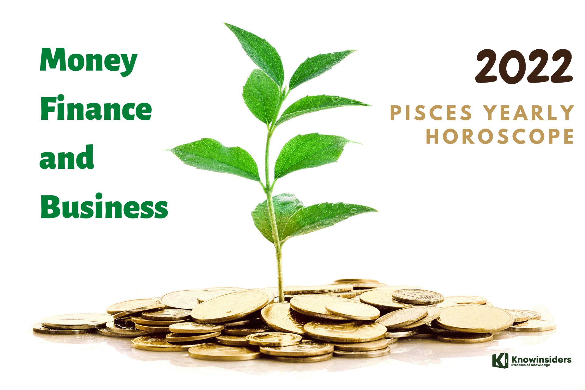 PISCES Yearly Horoscope 2022: Predictions for Money, Finance and Business