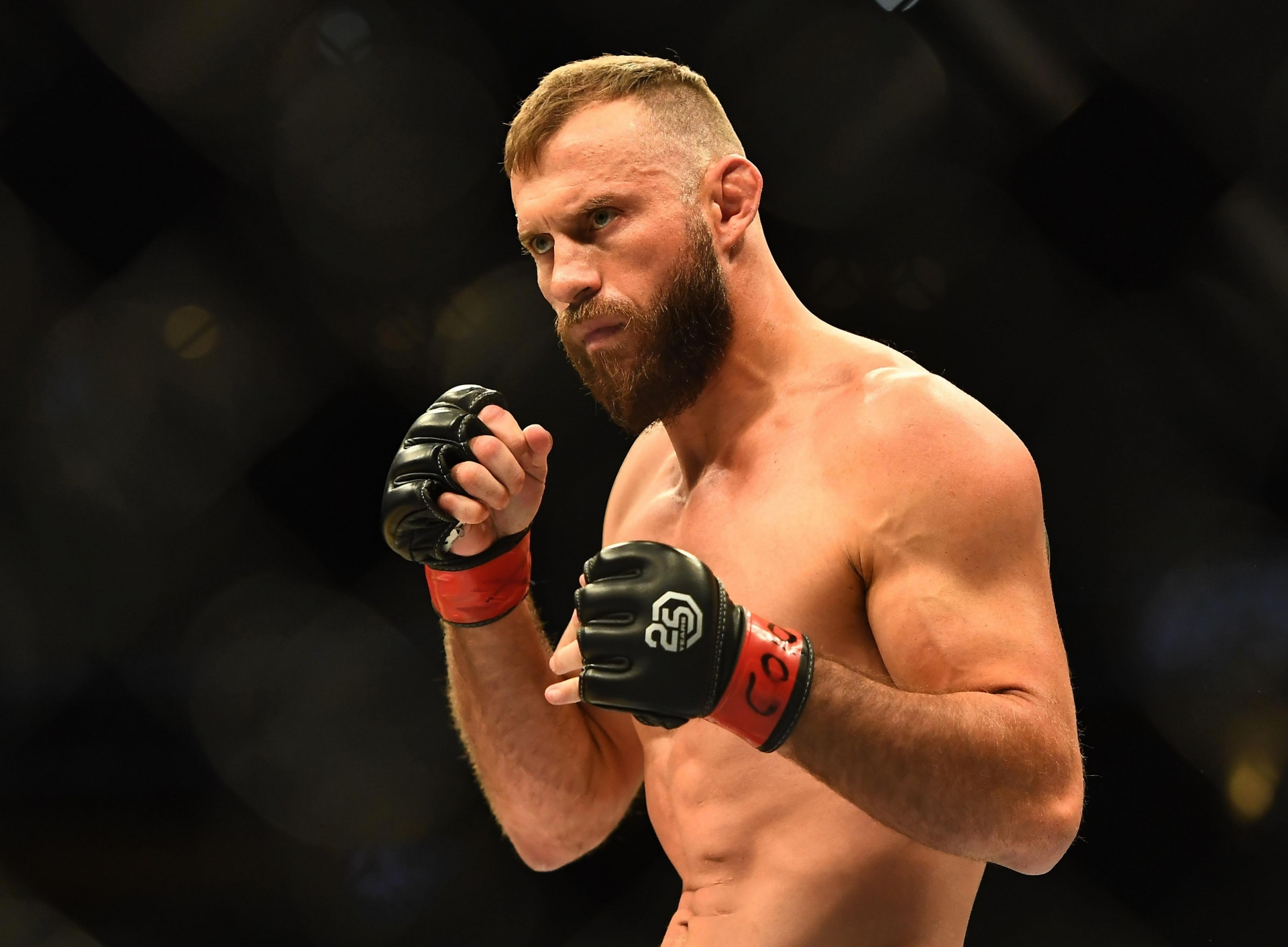 Top 10 Most Handsome UFC Fighters in America of All Time