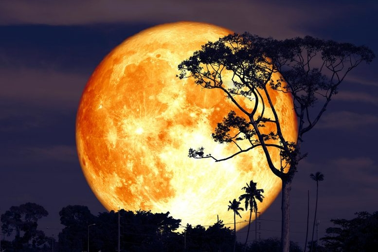 Calendar for Full Moon 2021: Names, Dates and Time