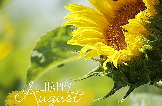 Hello August: Top Imagines, Best Wishesd, Messages and Poems